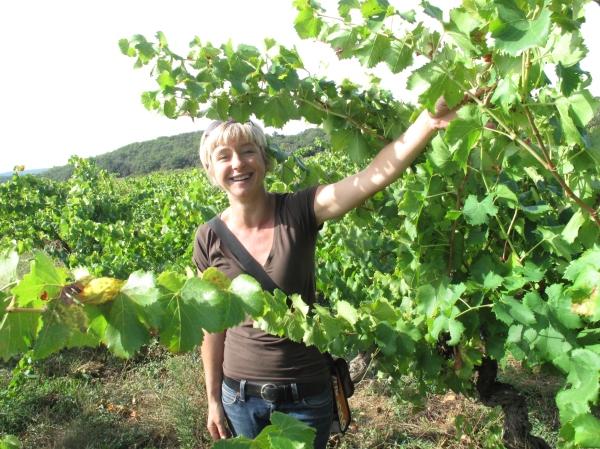 Côtes du Rhône néo vignerons 038
