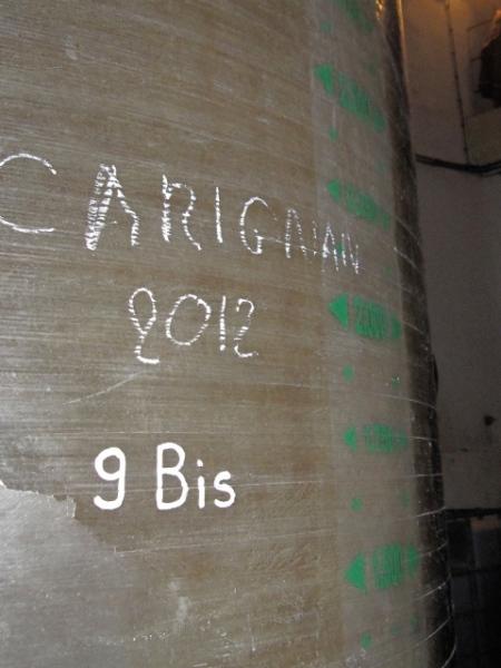 En pleine fins de malo, le Carignan de Sainte-Colombe. Photo©MichelSmith