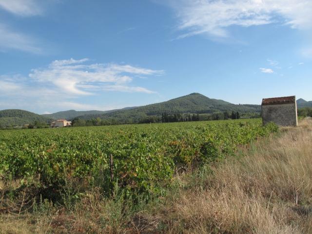 Côtes du Rhône néo vignerons 101