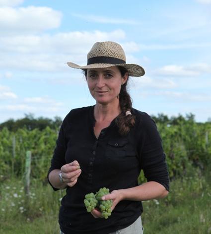 Noëlla dans les vignes, image prise sur le site de notre ami Jim Budd, http://jimsloire.blogspot.fr/