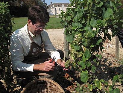Chateau-de-Meursault-sep-09-040