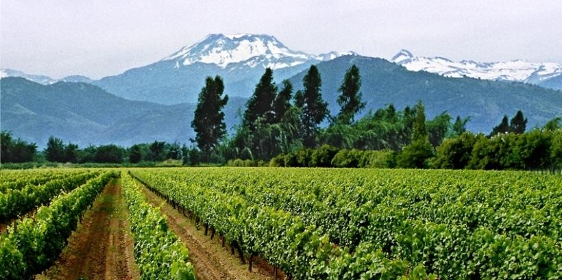 Copie de Cordillera Fundo 2