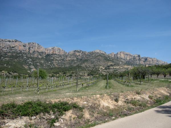 Les falaises de Montsant délimitent une partie du Priorat. Photo©MichelSmith