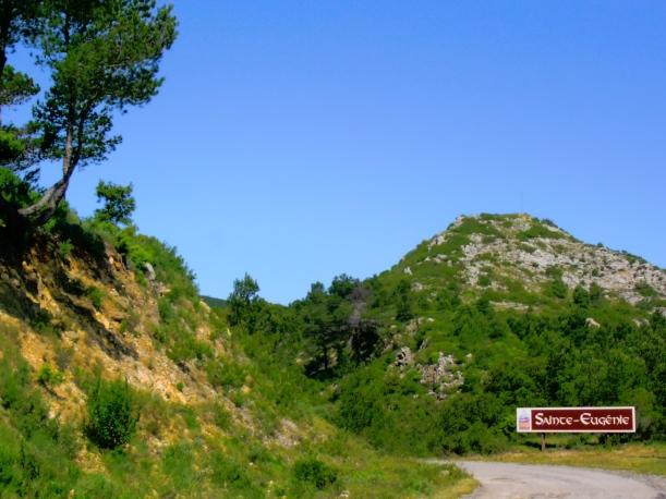 Sur la route de Sainte-Egénie, un parfum de Méditerranée. Photo©MichelSmith