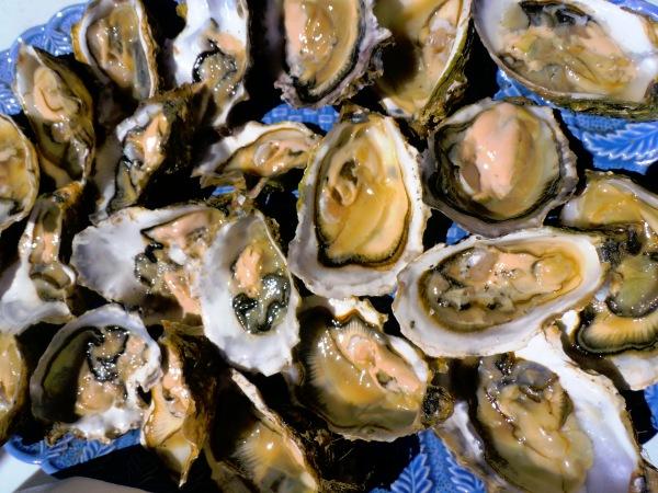 Imbattables, les huîtres de Leucate ! Photo©MichelSmith