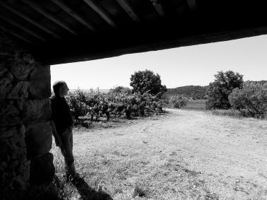 Jean Natoli s'offre un instant de contemplation. Photo©MichelSmith