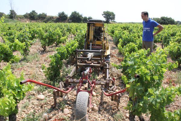 3. La charrue pour labourer la terre entre les rangs. Photo Agnieszka Kumor
