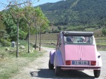 Millésime Languedoc 2014 063