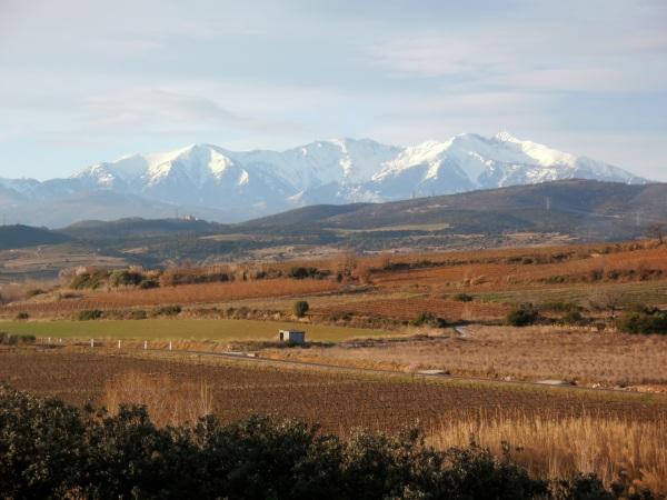 Entre Corbières et Roussillon, vues sur le Canigou. Photo©MichelSmith