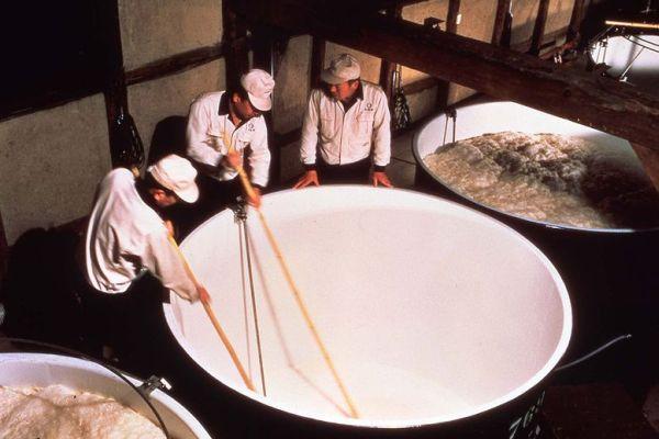 3. Moromi, la fermentation principale du saké. Photo DR