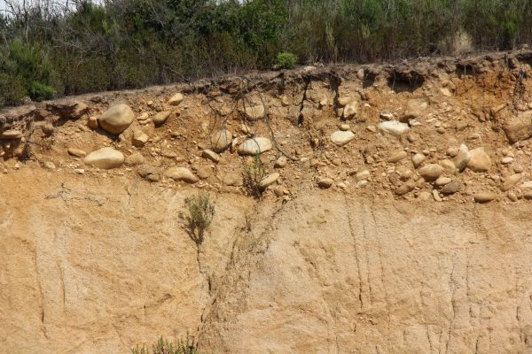 1. Les arènes granitiques constituent le sous-sol du vignoble de Corse-du-Sud. Photo Agnieszka Kumor