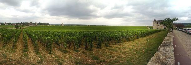 Panorama_du_Clos_Vougeot