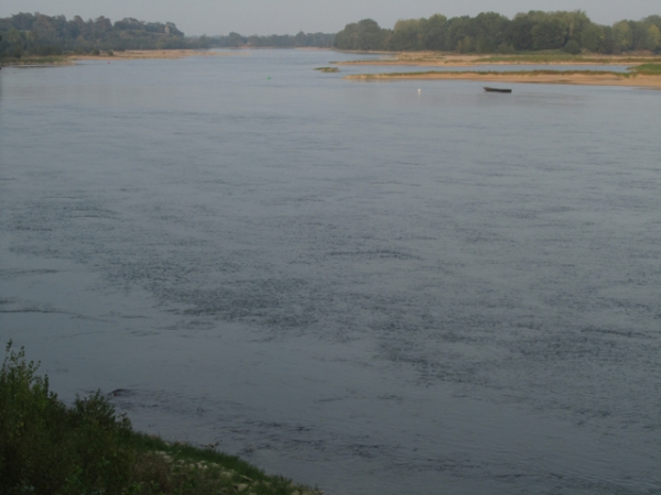 The Loire@Ancenis