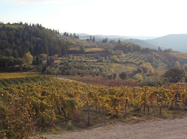 Un matin d'automne, entre Sienna et Firenze. Photo©MichelSmith