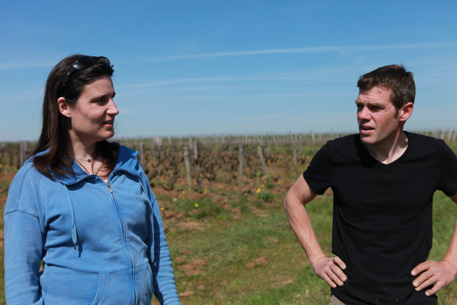 Anne-Cécile and Tanguy in their vineyard by Le Clos du Bourg, Vouvray.