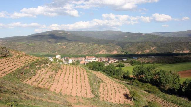 1a. Le vignoble de La Rioja, candidat au Patrimoine de l'humanité de l'Unesco. Photo Agnieszka Kumor, RFI_0