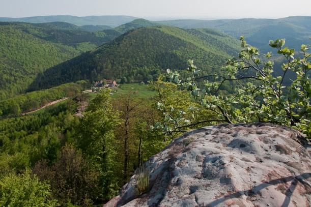 Ch‰teau du Loewenstein : vue vers le sud, Gimbelhof