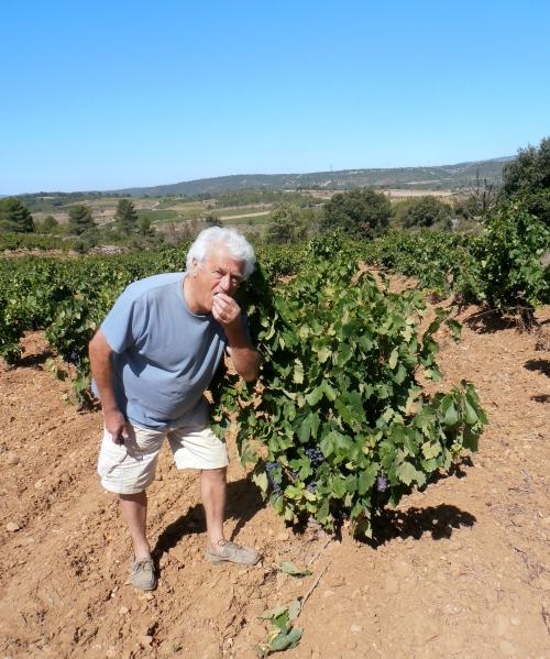 Philippe Courrian dans ses vieux Carignans. Photo©MichelSmith