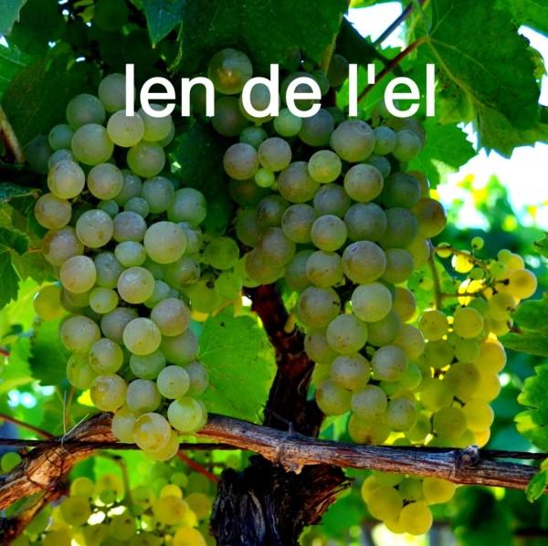 Loin-de-Loeil-2-007-1024x1021