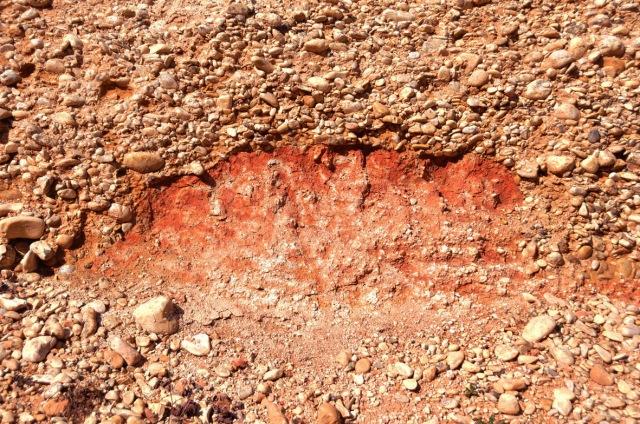 1EscaravaillesDerriere Cave congomérats sur marrnes rouges miocène sup