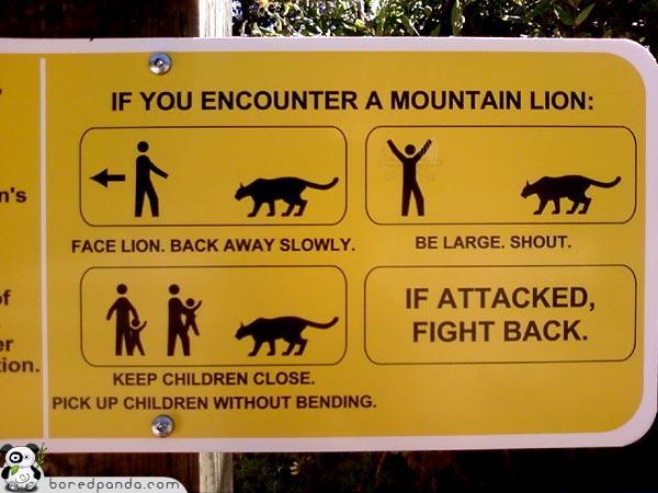 sign-mt-lion