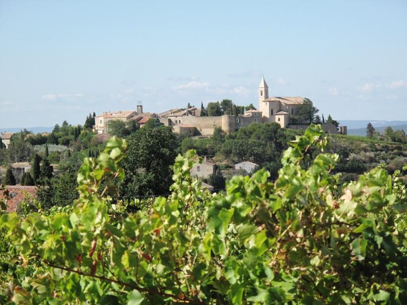 Côtes du Rhône néo vignerons 394