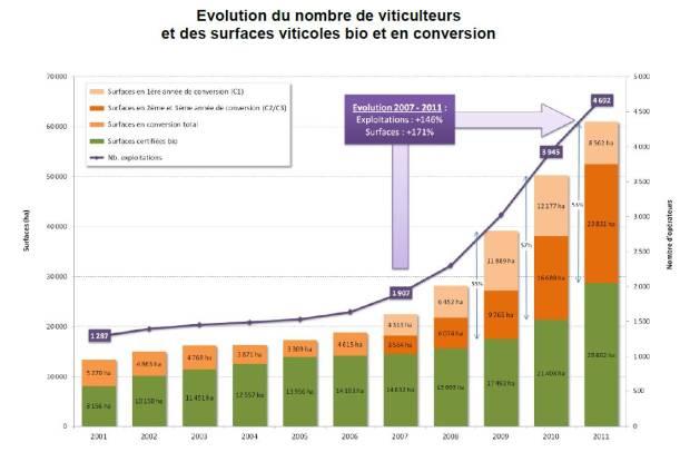 graphique_evolution_nbre_viticulteurs_surface_bio_zoom