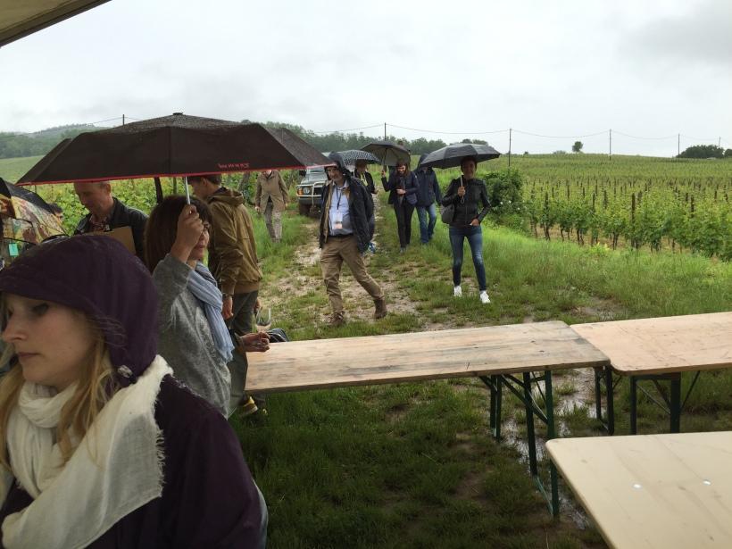 Millésime Alsace 2016 (34)