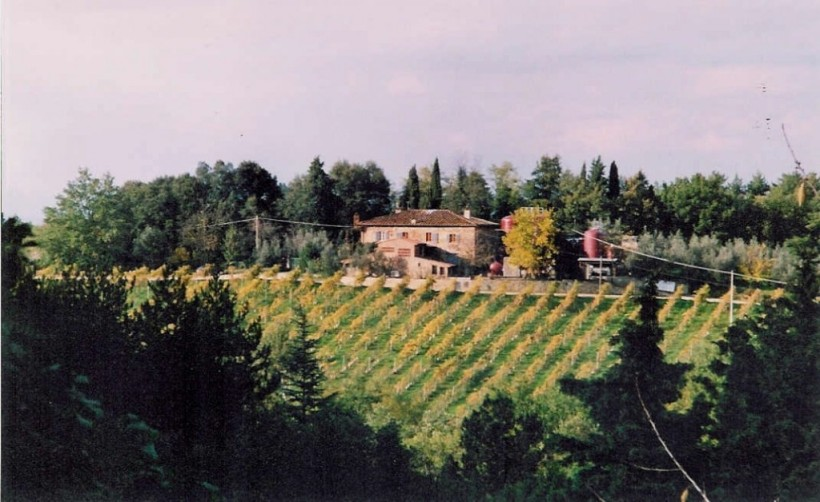 campolucci-vigneto-vineyard-campolucci-and-winery-panorama-autunno-autumn-2003-1024x628