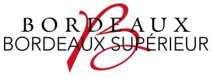 logo-bx-bxs-rouge