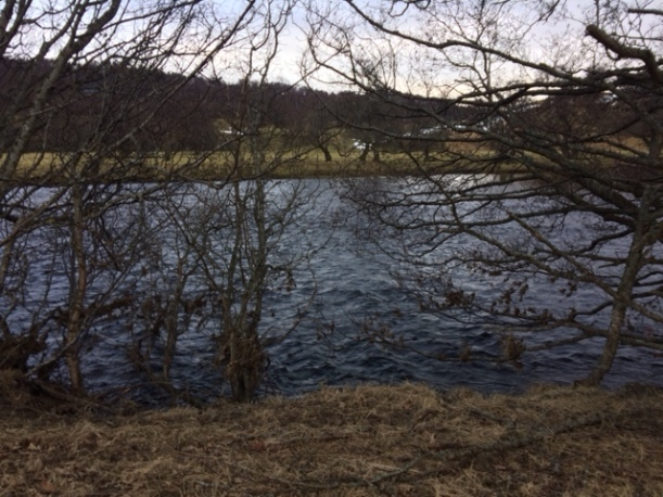 Fast flowing Spey