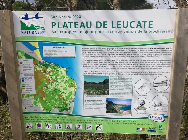 Leucate5