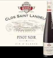 rene-mure-pinot-noir-vorbourg-clos-saint-landelin-alsace-grand-cru-france-10718224t