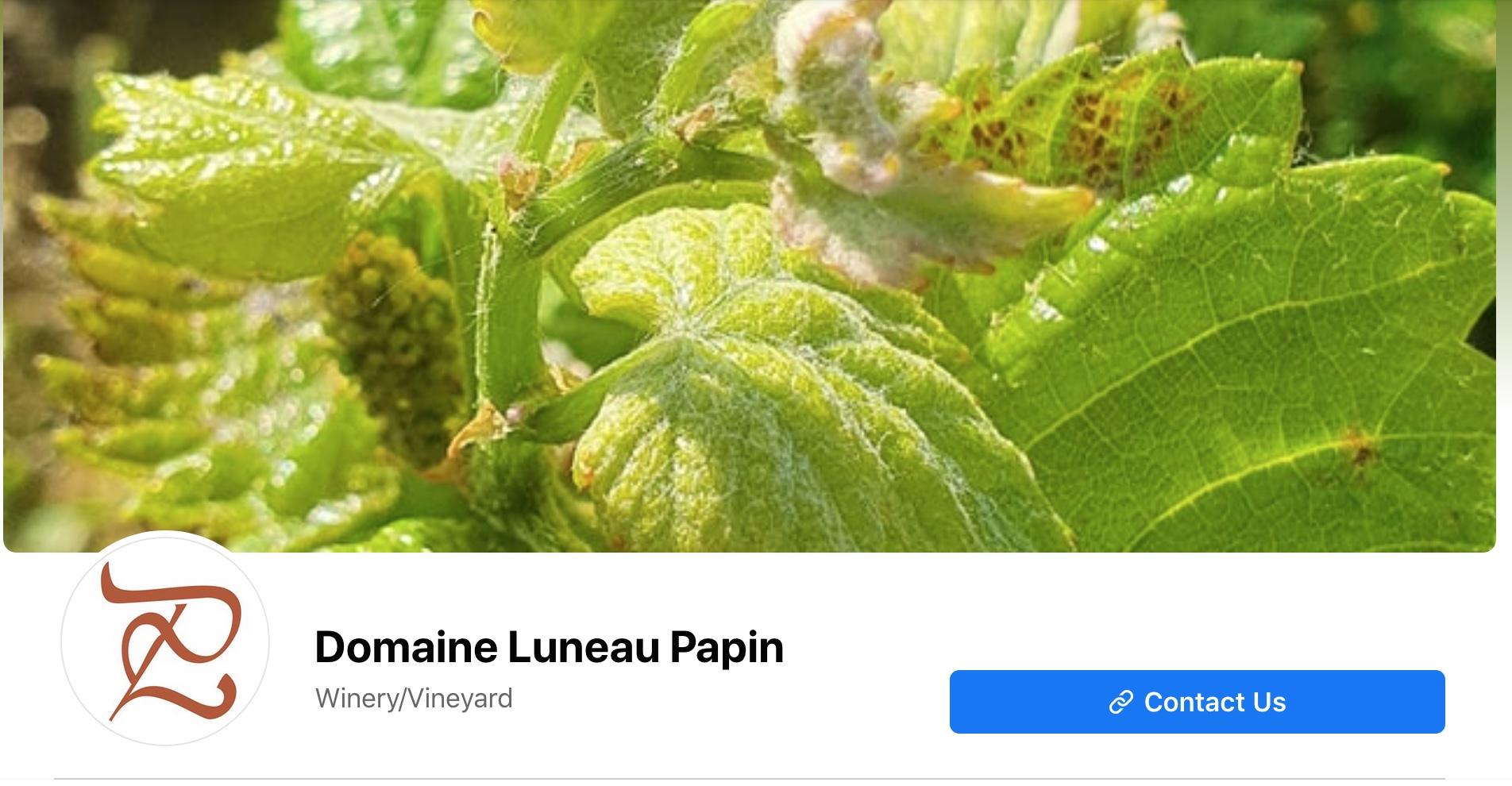 Luneau-Papin